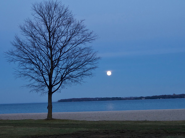 December's supermoon from the beach in Suttons Bay. Photo by Cathy McKinley.