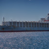 Live animal export ship