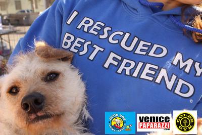 GOLD'S GYM. 360 HAMPTON AVE. VENICE, CA WWW.GOLDSGYM.COM.  Good Dog Animal Rescue.  http://www.gooddoganimalrescue.com.   Photos by www.venicepaparazzi.com