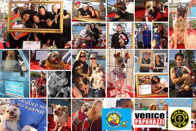 GOLD'S GYM. 360 HAMPTON AVE. VENICE, CA http://WWW.GOLDSGYM.COM. Good Dog Animal Rescue. http://www.gooddoganimalrescue.com. Photos by http://www.venicepaparazzi.com