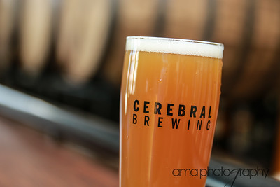 CerebralBrewing_ByAMAphotos-28