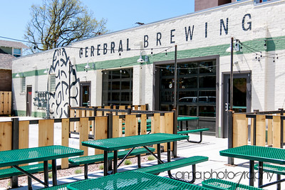 CerebralBrewing_ByAMAphotos-6