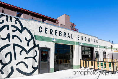 CerebralBrewing_ByAMAphotos-2