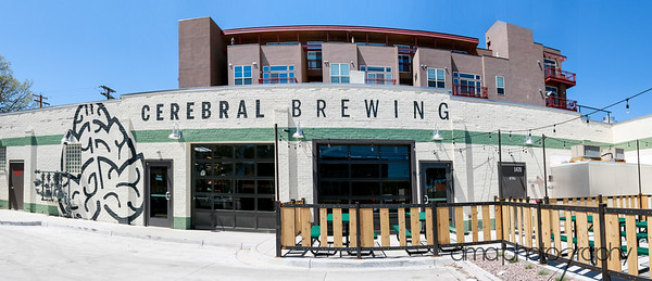 CerebralBrewing_ByAMAphotos-5