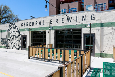 CerebralBrewing_ByAMAphotos-4