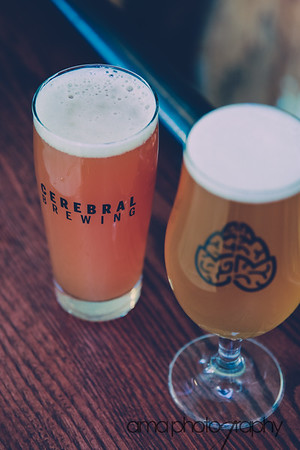 CerebralBrewing_ByAMAphotos-31