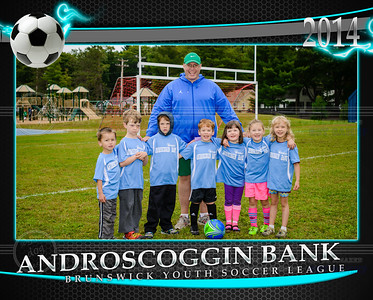 androsoggin bank team 8x10
