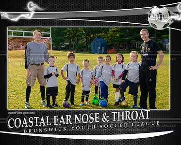 Coastal ENT team