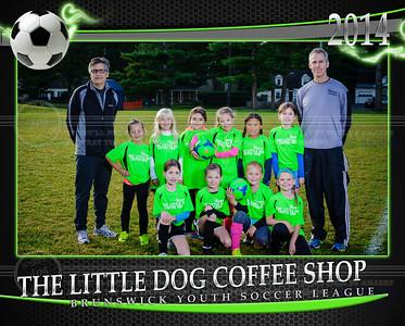 Little Dog 8x10