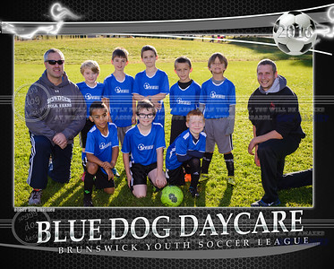 Blue Dog Team