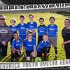 5x7 Team Blue Dog 02
