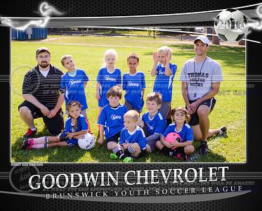 Goodwin Team