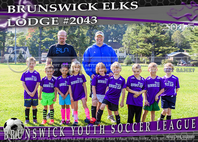 Brunswick Elks 5x7 Team