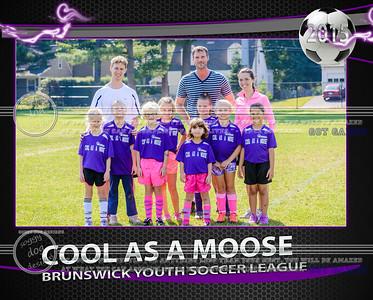 Cool as Moose Team