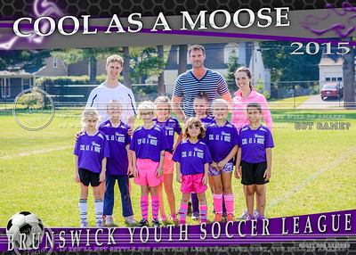 Cool as Moose 5x7 Team