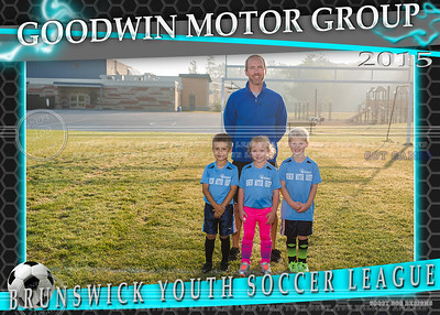 Goodwin Motor Group Team 5x7