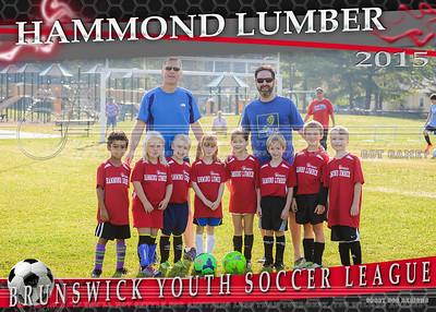 Hammond Lumber 5x7 Team