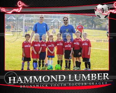 Hammond Lumber Team