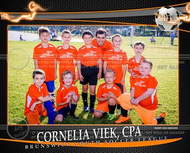 Cornelia Team