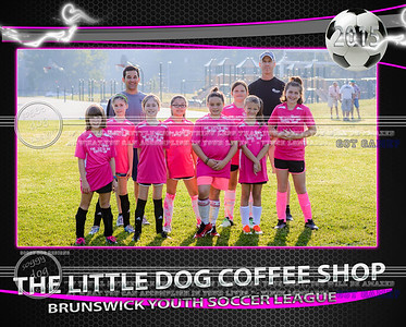 Little Dog Coffee Team