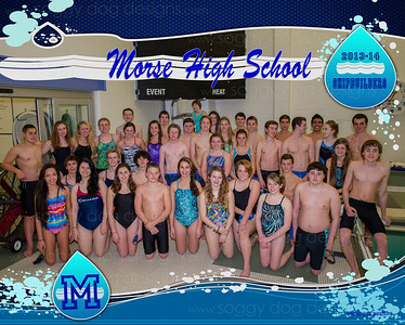 MHS Swim Team 2013-14