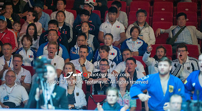2017 Suzuki World Judo Championships Budapest Day7 Teams, supporter, Team Germany_BT_NIKON D3_20170903__D3C5193