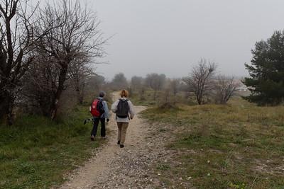 Après le pont abandon du GR2013 - Le long du canal d'Arles à Bouc - Km 2,75