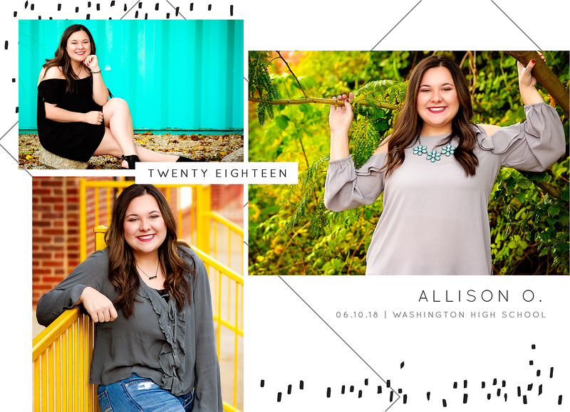 Allison Graduation Announcement BACK