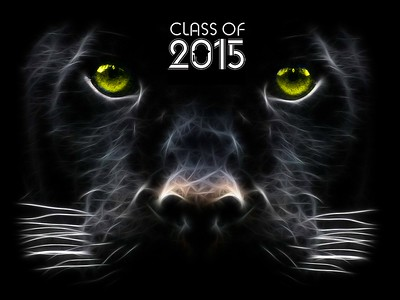 Class of 2015 Goreville High School Graduation