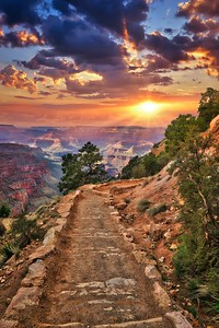 SOUTH KAIBAB MORNING