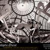 LE CAVALIER KEVIN STAUT SUR SILVANA DE HUS <br /> EN ACTION LORS DU GRAND PRIX HERMES DU SAUT HERMES 2011 AU GRAND PALAIS - 15-16-17 AVRIL 2011 - © CHRISTOPHE BRICOT