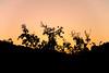 Ανατολή στον Αξό -Axos sunrise