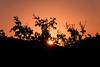 Ανατολή στον Αξό - Axos sunrise