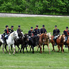 HORSES MARCH