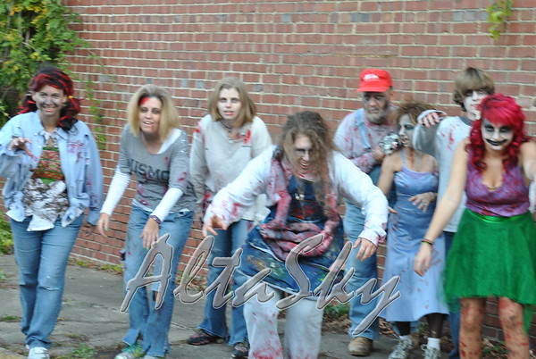 WASHINGTON ST BY-PASS ZOMBIE ALLEY