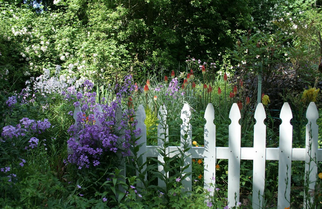 Alethea's Picket Fence