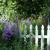 Alethea's Picket Fence
