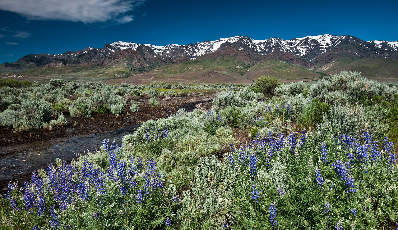 1 4 steens mountain and alvord creek