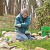 April 2013 Volunteers pulling weeds  (3)