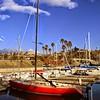 Dana Point Harbor - California Dreaming