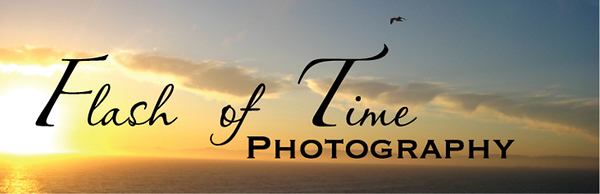 "FLASH OF TIME PHOTOGRAPHY  You may contact me by phone or email  <a href=""mailto:diana@flashoftimephotography.com"">diana@flashoftimephotography.com</a>  410-259-3539"