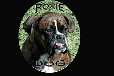 roxie on blk