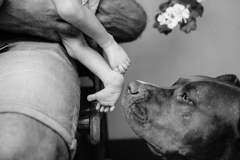 Newborn & Baby Photography · Fotografia de Recien nacidos y Bebes Buenos Aires Argentina · gvf