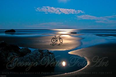 """""""Moon Bike"""""""