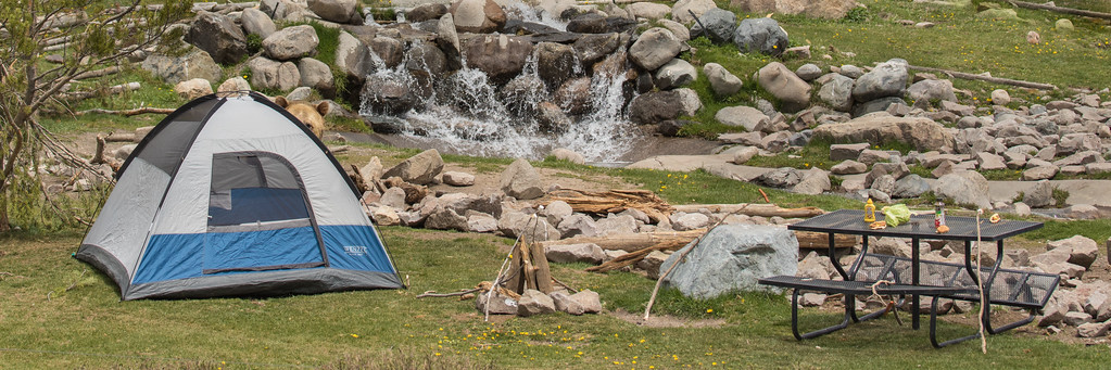 Grizzly Bear Campsite