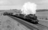 6363 climbing towards Bincombe tunnel 7th May 1955 Churchward 4300 class