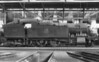 7203 Llanelly shed April 1955 Collett 7200 class 2-8-2T