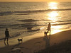 'Dog Beach' at Huntington Beach at sunset