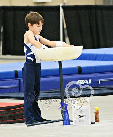 Brody Gymnastics Meet Columbus Ohio   Dec 2015