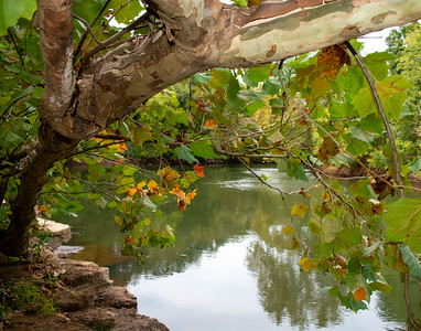 RockIsland on the Etowah River